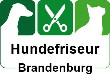 hundefriseur in brandenburg