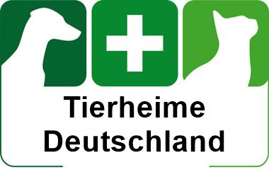 tierheime in deutschland